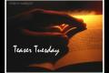 Teaser Tuesday #33